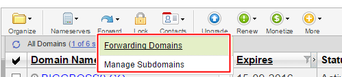 URL forwarding masking